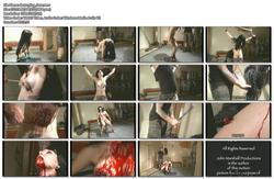 http://img144.imagevenue.com/loc116/th_102798668_destroying_slave.wmv_123_116lo.jpg