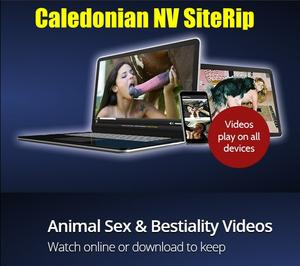 25 Best of Caledonian NV SiteRip Videos