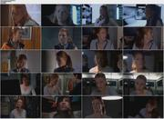 Angie Everhart - Bugs (2003) [DVD]