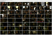 NINA DOBREV - The full and complete bar scene from The Vampire Diaries s01 e11 - 1 clip *Requested*