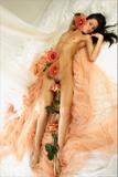 Maria - Five Rosesx0xruflmdj.jpg